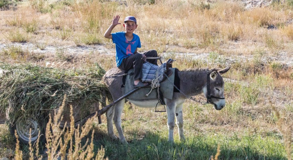 Kyrgyzstan 8041